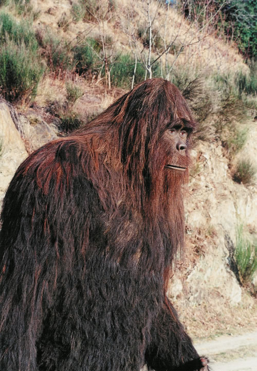 bigfoot a
